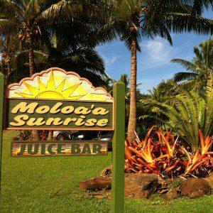 Sunrise Juice Bar - Moloaa bay