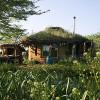 Communal Living minimizes carbon footprint