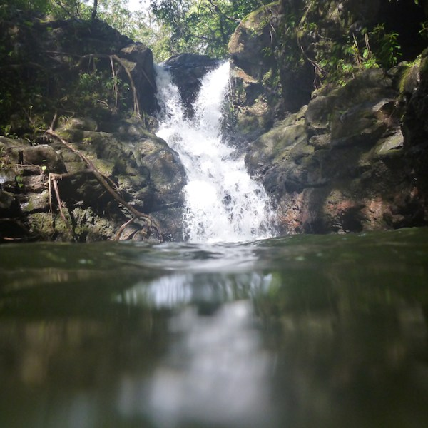 Kalauao Falls (Junction off Aiea Loop Trail)