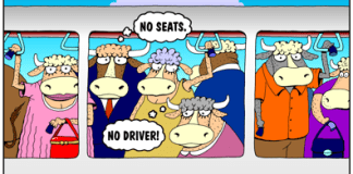 Honolulu Rail Transit cartoon, cattle car, cars have few seats, no driver