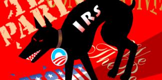 IRS Attack on Tea Party, Patriots, cartoon