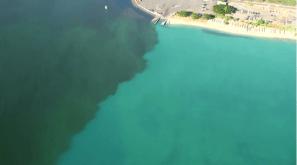 GOO: The molasses spill impacted sealife in Ke'ehi Lagoon, seen here, and Honolulu Harbor