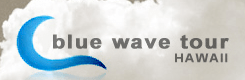 Blue Wave Tour logo