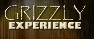 Grizzly experience