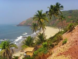 Arambol_beach_2009 (1)