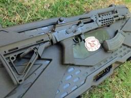 case and gun