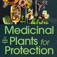 herbalmedicinehealth_intro_facebook