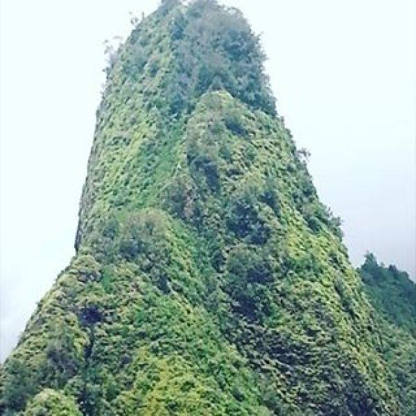 #maui  #マウイ島