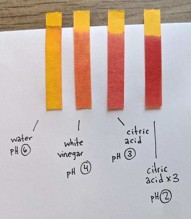 testing the pH of citric acid vs white vinegar