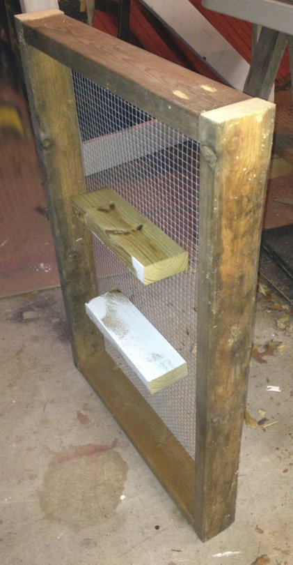 this frame with mesh top makes it easy to grow fresh greens even in a crowded chicken coop 51