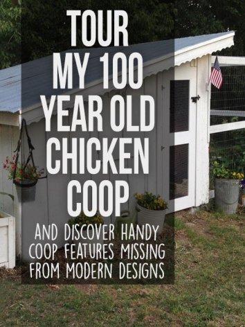 100 Year Old Chicken Coop Tour