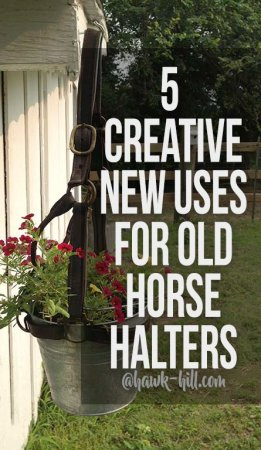 A collection of unique ways to reuse old horse halters
