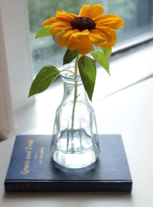 Sunflower in Vintage Salad Dressing Container