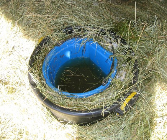 DIY self-heating bucket