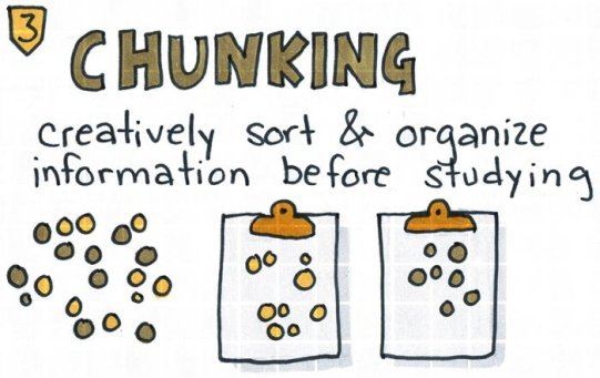 creatively sort and organize information before studying.