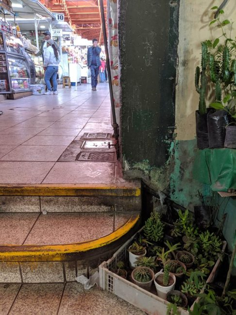 In the central market in Arequipa, Peru, you can buy everything from meats to houseplants, to educational supplies, to party supplies