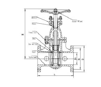 Cast iron gate valve
