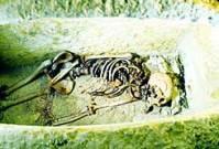 השלד שגילה הרובוט בקבר ליד הפירמידה, אתמול
