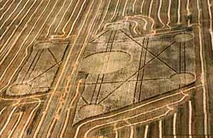 סימנים בשדה התירס שלכאורה נעשו בידי חייזרים