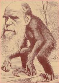 ציור של דארווין כקוף בידי מתנגדי האבולוציה