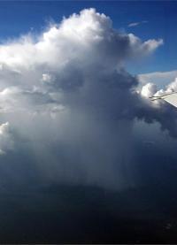 גשם ביער הגשם באמזונס