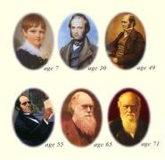 דארווין בגילאים שונים איור: אתר darwin day