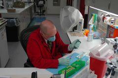 """מדען פורנזי בצבא ארה""""ב מטפל בעדויות במעבדה למיצוי DNA"""
