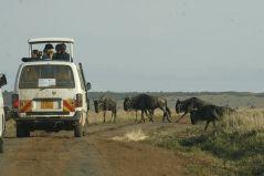 תיירים בספארי בקניה. מתוך ויקיפדיה