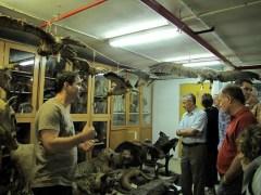 משתתפי כנס הטקסונומיה הבינלאומי מבקרים במחלקה לביולוגיה באוניברסיטת תל-אביב. צילום: אוניברסיטת תל-אביב