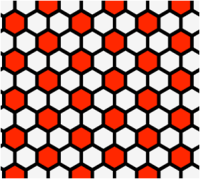 ריצוף הקסגונלי כתיאור סכמטי לסידור התאים ברקמה. המשושים האדומים מסמלים תאים שיהפכו להיות תאי עצב. המקור לתמונה: פאו.