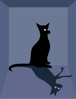 פרדוקס החתול של שרדינגר, מתוך מצגת פרס נובל באתר ועדת הפרס