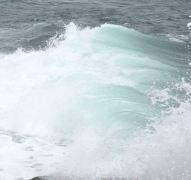 עד כמה בריא הים? צילום: איתן קריין, סיינטיפיק אמריקן ישראל