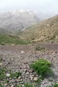 נוף למרגלות הרי הזגרוס באירן. צילום: shutterstock
