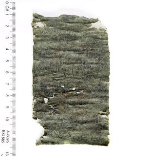 קללה בת 1,700 שנה. צילום: קלרה עמית, באדיבות רשות העתיקות