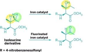 זרזי ברזל המסוגלים לחמצן באופן בררני קשרי פחמן-מימן שונים (צהוב וירוק בהתאמה לזרזים ברזל-PDP ו- ברזל CF3-PDP) באותה מולקולה. השיטה החדשה תוכל להאיץ את קצב הגילוי של תרופות וחומרים חדשים לתועלת האדם. [באדיבות M. Christina White מאוניברסיטת אילינוי].