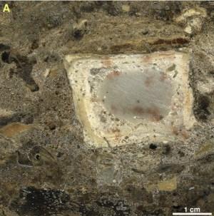 """מערת קסם: סריקה של """"בלוק"""" אדמה משוייף שנחפר מהמערה, ובו נראים עצמות שרופות ושברי אבן גיר בתוך משקע אפור של אפר המדורה. תצלום: מכון ויצמן ואוניברסיטת תל-אביב"""