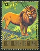 אריה מונצח על בול ממדינת גינאה שבמערב אפריקה מ-1977. צילום: rook76 / Shutterstock.com