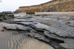 חופי הפיסבורו בבריטניה: צילום טביעות רגליים פונים דרומה