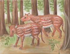 איור אמן של המין Cambaytherium thewissi, האב הקדמון של הסוסים והקרנפים שמאובניו התגלו בהודו. איור Elaine Kasmer עבור אוניברסיטת ג'ונס הופקינס