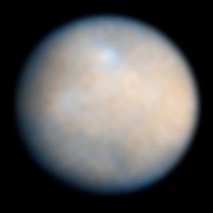 התמונה הטובה ביותר שיש לנו של האסטרואיד קרס לפני הגעת החללית Dawn אליו. צילום: טלסקופ החלל האבל