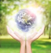 האיזון האקולוגי עלול להתמוטט. איור: shutterstock