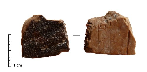 סימני שריפה על שבר של שריון צב ממערת קסם. שימו לב כי החלק החיצוני של השריון שרוף בעוד החלק הפנימי אינו שרוף. נתונים אלה מעידים כי הצב נצלה בתוך השריון.