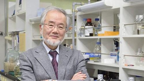 """יושינורי אושומי. חתן פרס נובל לרפואה לשנת 2016. צילום יח""""צ אוניברסיטת טוקיו"""