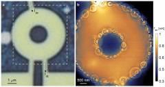 מדידה של מעבר חום בדוגמה נקיה של גרפן. שמאל: תמונה אופטית של דוגמת הגרפן. ימין: ההדמיה התרמית חושפת שרשרת של טבעות המהווה תחימה של תהליך ייחודי של מעבר חום המתרחש בדוגמה.