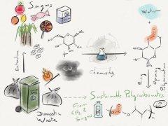 איור גרפי המתאר כיצד סוכר ופחמן דו-חמצני מומרים לפלסטיק. באדיבות Georgina Gregory.