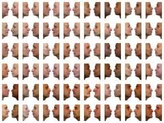למוח של פרימטים יש יכולת מופלאה לזהות פרצופים. חוקרים מתחילים כעת לפצח את הקוד הזה. איור: Turinboy.