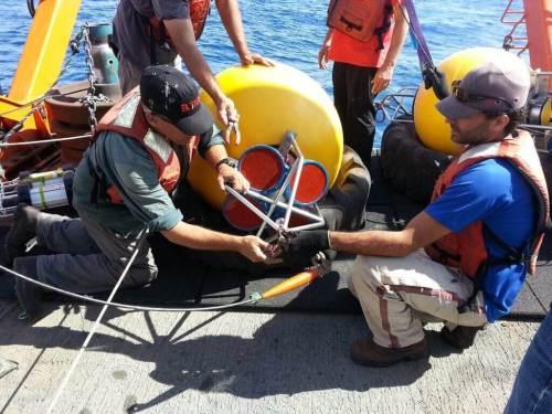 צוות החוקרים בזמן מיקום התחנה הימית. תצלום: באדיבות צוות המחקר.