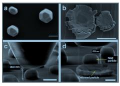 מבחני דחיסה של חלקיקי ניקל, כפי שהם נראים במיקרוסקופ אלקטרונים סורק ברזולוציה גבוהה. a ו-c מציגים את החלקיקים לפני הדחיסה. b ו-d - אחרי הדחיסה