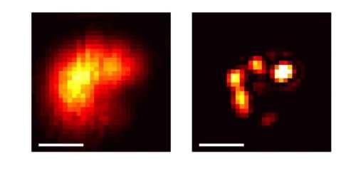 הרבה יותר פרטים: ננו-גבישים כפי שהם נראים באמצעות שיטת המיקרוסקופיה שפיתחו מדעני מכון ויצמן למדע (מימין) וכפי שהם נראים במיקרוסקופ אור רגיל (משמאל). קנה המידה: 0.5 מיקרון