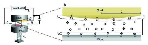 ההתקן אשר אפשר למדענים למדוד את הכוחות הפועלים בננו-חריץ בין משטח זהב למשטח נציץ